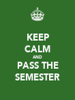 KEEP CALM AND PASS THE SEMESTER - Personalised Poster large