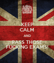 KEEP CALM AND PASS THOSE FUCKING EXAMS! - Personalised Poster large