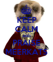 KEEP CALM AND PRAISE MEERKATS - Personalised Poster large