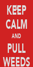 KEEP CALM AND PULL WEEDS - Personalised Poster large