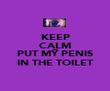 KEEP CALM AND PUT MY PENIS IN THE TOILET - Personalised Poster large