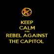 KEEP CALM AND REBEL AGAINST THE CAPITOL  - Personalised Poster large