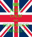 KEEP CALM AND REMEMBER WALES ! - Personalised Poster large
