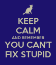 KEEP CALM AND REMEMBER YOU CAN'T FIX STUPID - Personalised Poster large