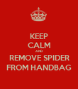 KEEP CALM AND REMOVE SPIDER FROM HANDBAG - Personalised Poster large