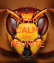 KEEP CALM AND REUNITE  - Personalised Poster large