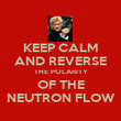 KEEP CALM AND REVERSE THE POLARITY OF THE NEUTRON FLOW - Personalised Poster large