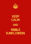 KEEP CALM AND RIBBLE SUNFLOWERS - Personalised Poster large