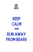 KEEP CALM AND RUN AWAY FROM BEARS - Personalised Poster large