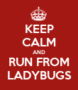 KEEP CALM AND RUN FROM LADYBUGS - Personalised Poster large
