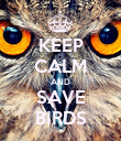 KEEP CALM AND SAVE BIRDS - Personalised Poster large