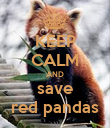 KEEP CALM AND save red pandas - Personalised Poster large