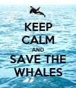 KEEP CALM AND SAVE THE WHALES - Personalised Poster large