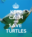 KEEP CALM AND SAVE  TURTLES - Personalised Poster large