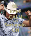 KEEP CALM AND Sertanejo  ON - Personalised Poster large