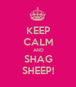 KEEP CALM AND SHAG SHEEP! - Personalised Poster large