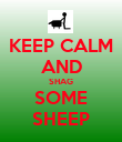 KEEP CALM AND SHAG SOME SHEEP - Personalised Poster large
