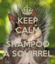 KEEP CALM AND SHAMPOO A SQUIRREL - Personalised Poster large