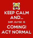 KEEP CALM AND... SHIT, ELYSE  IS COMING! ACT NORMAL - Personalised Poster large