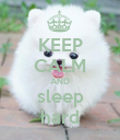 KEEP CALM AND sleep hard - Personalised Poster large