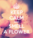 KEEP CALM AND SMELL A FLOWER - Personalised Poster large