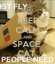 KEEP CALM AND SPACE  CAT  - Personalised Poster large