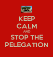 KEEP CALM AND STOP THE PELEGATION - Personalised Poster large