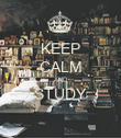 KEEP CALM AND STUDY  - Personalised Poster large