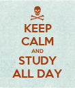 KEEP CALM AND STUDY ALL DAY - Personalised Poster large