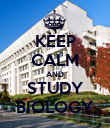 KEEP CALM AND STUDY BIOLOGY - Personalised Poster large