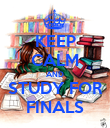 KEEP CALM AND STUDY FOR FINALS - Personalised Poster large