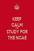 KEEP CALM AND STUDY FOR THE NCAE - Personalised Poster large