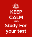 KEEP CALM AND Study For your test - Personalised Poster large