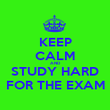 KEEP CALM AND STUDY HARD FOR THE EXAM - Personalised Poster large