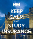 KEEP CALM AND STUDY INSURANCE - Personalised Poster large