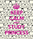 KEEP CALM AND STUDY PRINCESS - Personalised Poster large