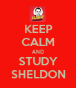 KEEP CALM AND STUDY SHELDON - Personalised Poster large