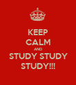KEEP CALM AND STUDY STUDY STUDY!!! - Personalised Poster large