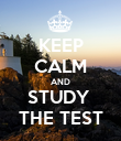 KEEP CALM AND STUDY  THE TEST - Personalised Poster large