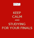KEEP CALM AND STUDYING FOR YOUR FINALS - Personalised Poster large