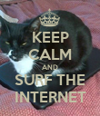 KEEP CALM AND SURF THE INTERNET - Personalised Poster large