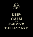 KEEP CALM AND SURVIVE  THE HAZARD - Personalised Poster large