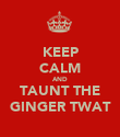 KEEP CALM AND TAUNT THE GINGER TWAT - Personalised Poster large