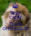 KEEP CALM AND TEASE OFFICEMATE - Personalised Poster large
