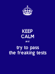 KEEP CALM and  try to pass the freaking tests - Personalised Poster large