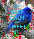 KEEP CALM AND TWEET IT - Personalised Poster large