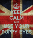 KEEP CALM AND USE YOUR PUPPY EYES - Personalised Poster large