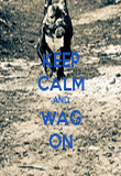 KEEP CALM AND WAG ON - Personalised Poster large