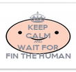 KEEP CALM AND WAIT FOR FIN THE HUMAN - Personalised Poster large