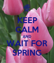 KEEP CALM AND WAIT FOR SPRING - Personalised Poster large